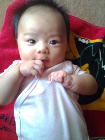 赤ちゃんの顔の変化を観察する_f0138645_874870.jpg