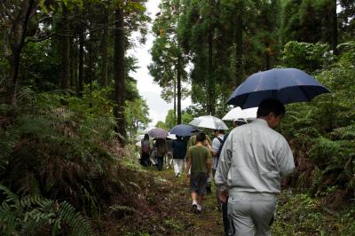 飫肥杉ツアー2011秋 レポート_f0138874_16244759.jpg