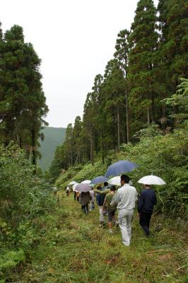 飫肥杉ツアー2011秋 レポート_f0138874_16245765.jpg