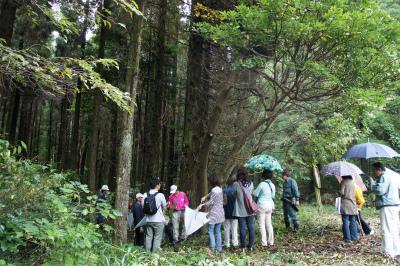 飫肥杉ツアー2011秋 レポート_f0138874_16252630.jpg