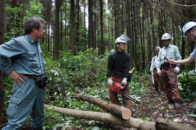 飫肥杉ツアー2011秋 レポート_f0138874_1626675.jpg