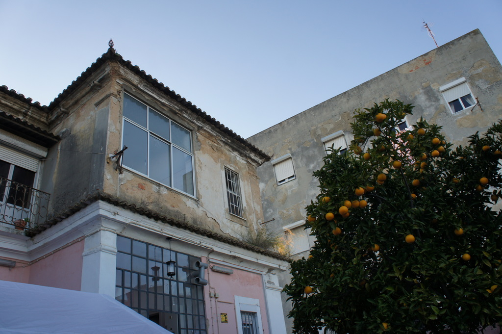 Lisboaで新年会!_c0180686_2251729.jpg