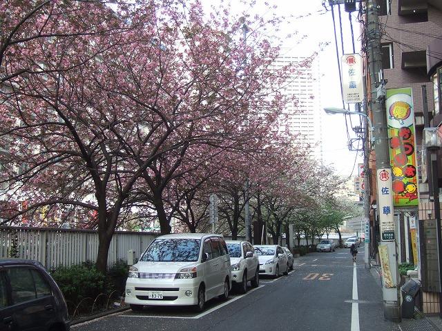2012年 おまつり本舗・大新年会_f0033986_1714716.jpg