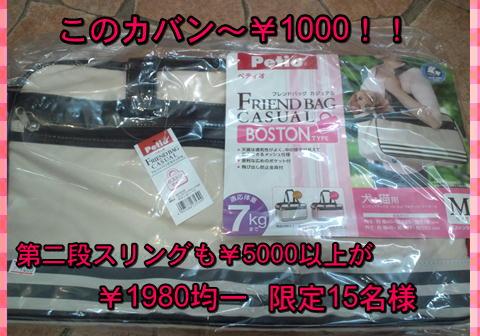f0234395_8504183.jpg