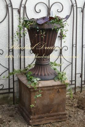 庭を。。_c0178104_910946.jpg