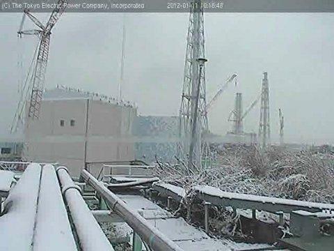 A Happy New Snowing !:福一原発に積雪!_e0171614_20393871.jpg