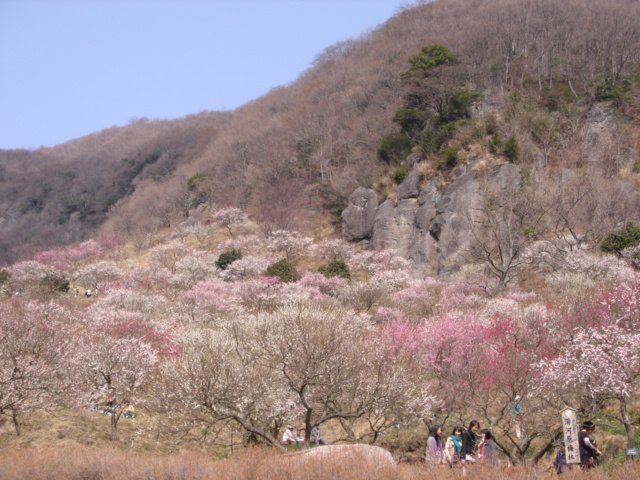 新春のご挨拶_e0152233_21201940.jpg