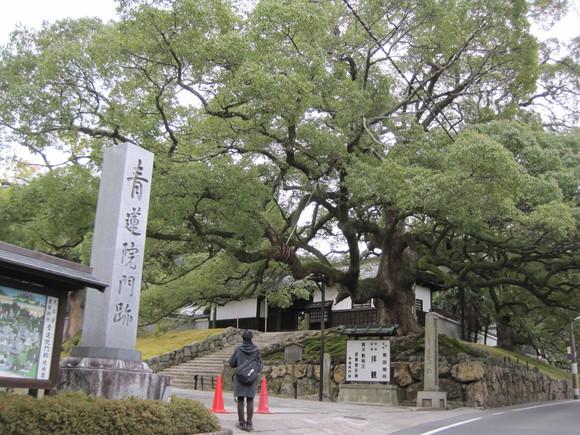 食い倒れのお正月 ④ 祇園~蹴上_f0236260_20194196.jpg