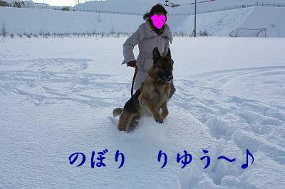 f0146769_23464247.jpg
