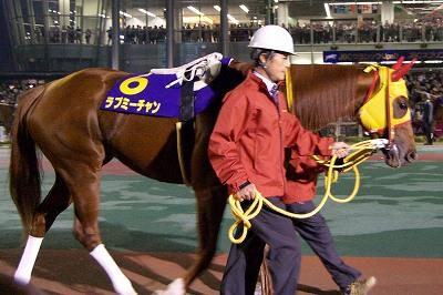 2011年NARグランプリ発表、地方年度代表馬はフリオーソが4度目の栄冠_b0015386_2283777.jpg
