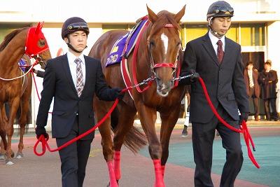 2011年NARグランプリ発表、地方年度代表馬はフリオーソが4度目の栄冠_b0015386_2292513.jpg