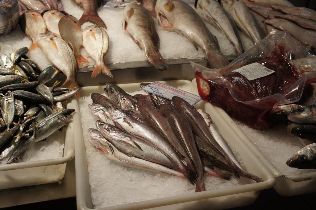 リスボンの魚市場!_c0180686_18424355.jpg