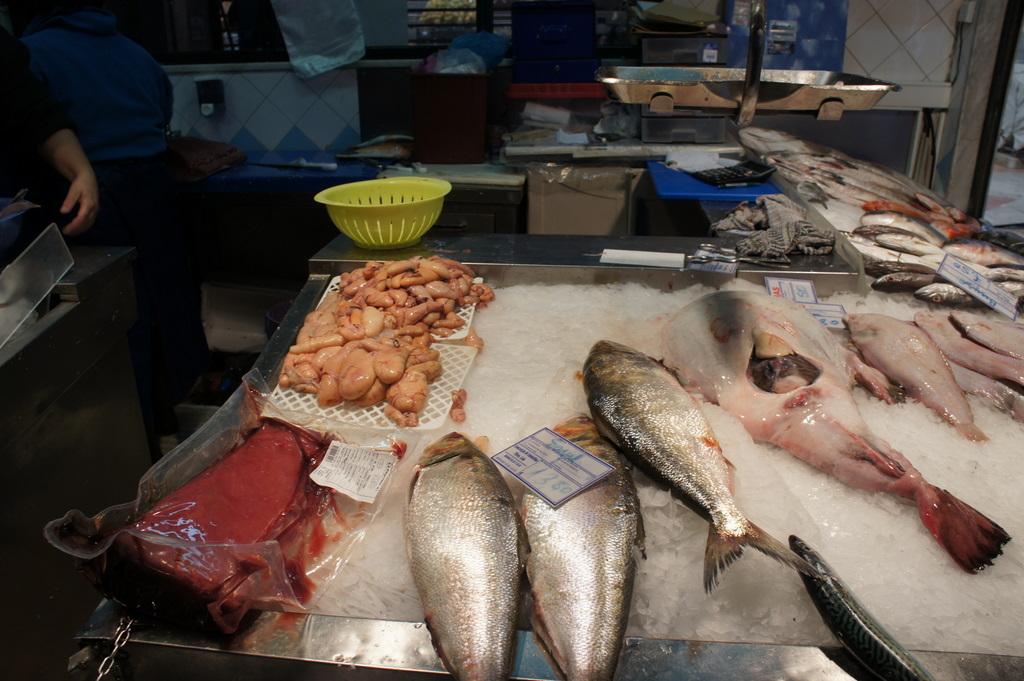 リスボンの魚市場!_c0180686_18473318.jpg
