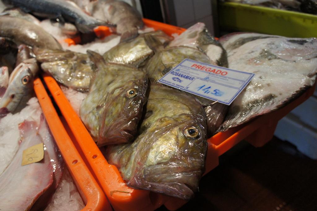 リスボンの魚市場!_c0180686_1851859.jpg