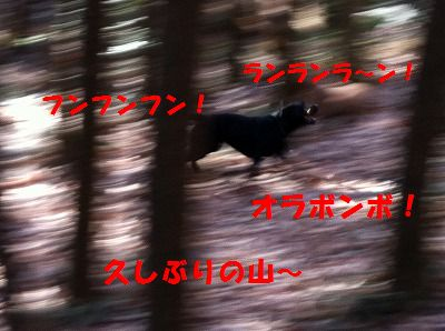 f0234395_1164644.jpg
