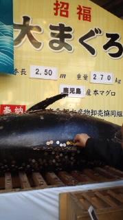 西宮神社_a0126497_18205596.jpg