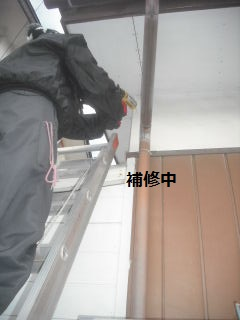 震災復旧工事 浴室・外壁・他_f0031037_21485722.jpg