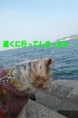 d0013645_145850100.jpg