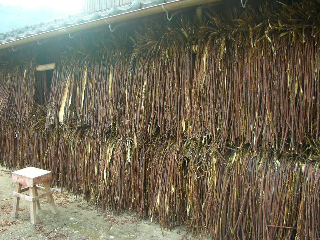 鍋野和紙の収穫祭へ_f0146802_1957795.jpg