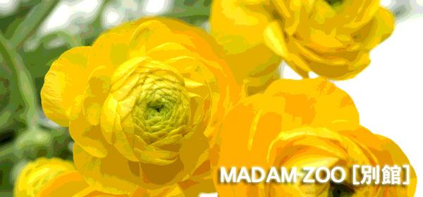 MADAM-ZOO [別館] madamzoo.exblog.jp