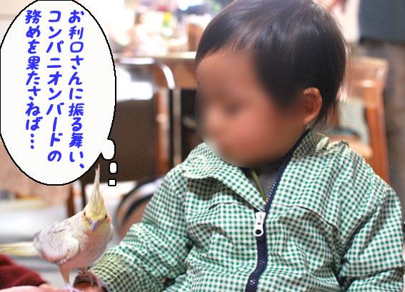 b0240299_16544189.jpg