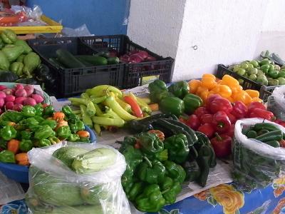 ++国が野菜摂取を呼びかけている++_e0140921_17523463.jpg