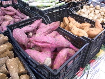 ++国が野菜摂取を呼びかけている++_e0140921_1753568.jpg