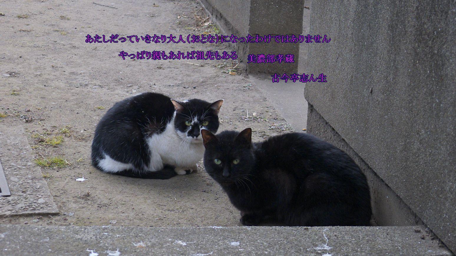 c0008948_1093595.jpg