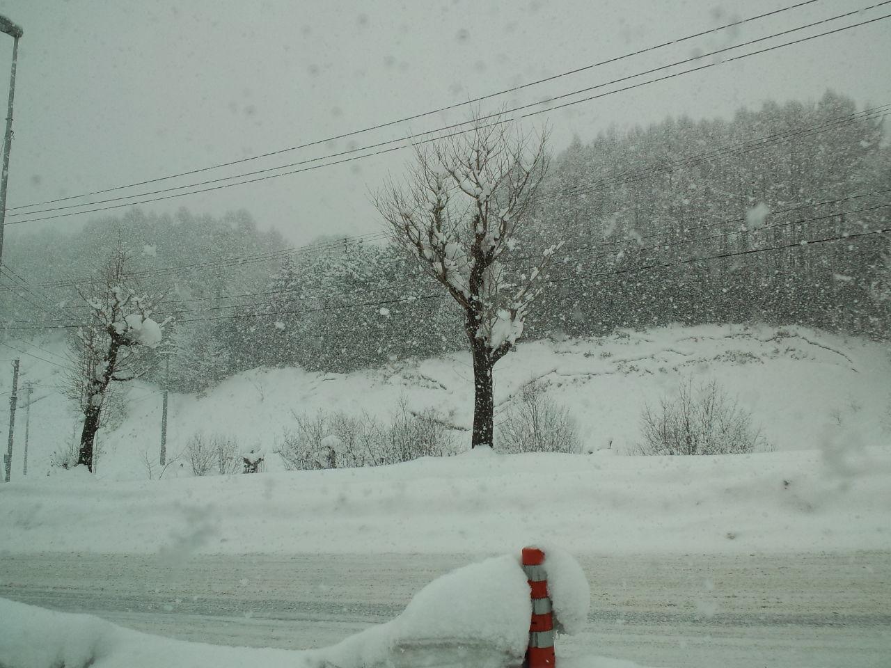 北海道五日目 ☆ カムイスキーリンクス_c0151965_154781.jpg
