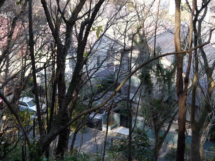 12年初の六国見山森林公園の臨時手入れ終了(1・14)_c0014967_18532476.jpg