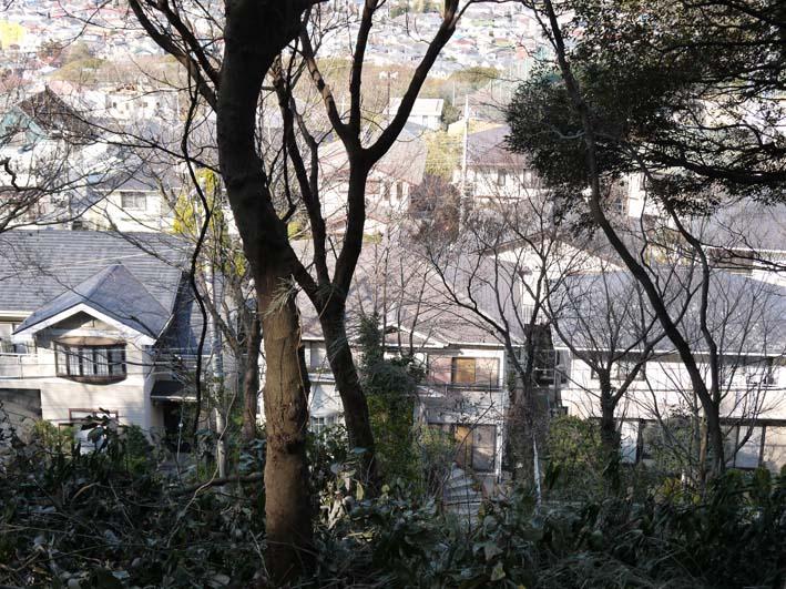 12年初の六国見山森林公園の臨時手入れ終了(1・14)_c0014967_18542059.jpg