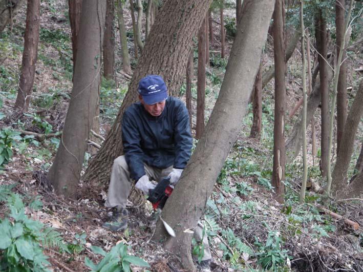 12年初の六国見山森林公園の臨時手入れ終了(1・14)_c0014967_18572865.jpg