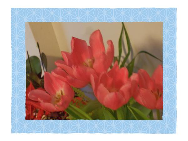 f0187269_20125135.jpg