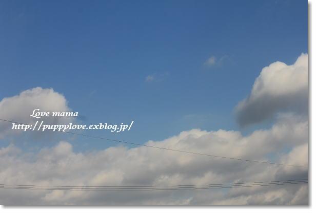 b0136683_9565013.jpg