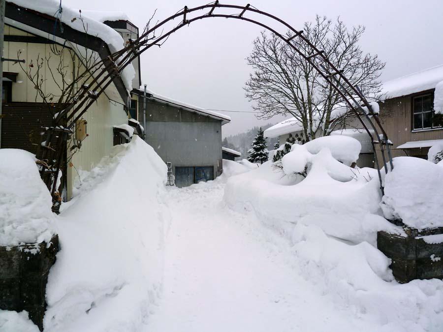M様邸「三木田の家」_f0150893_192832.jpg