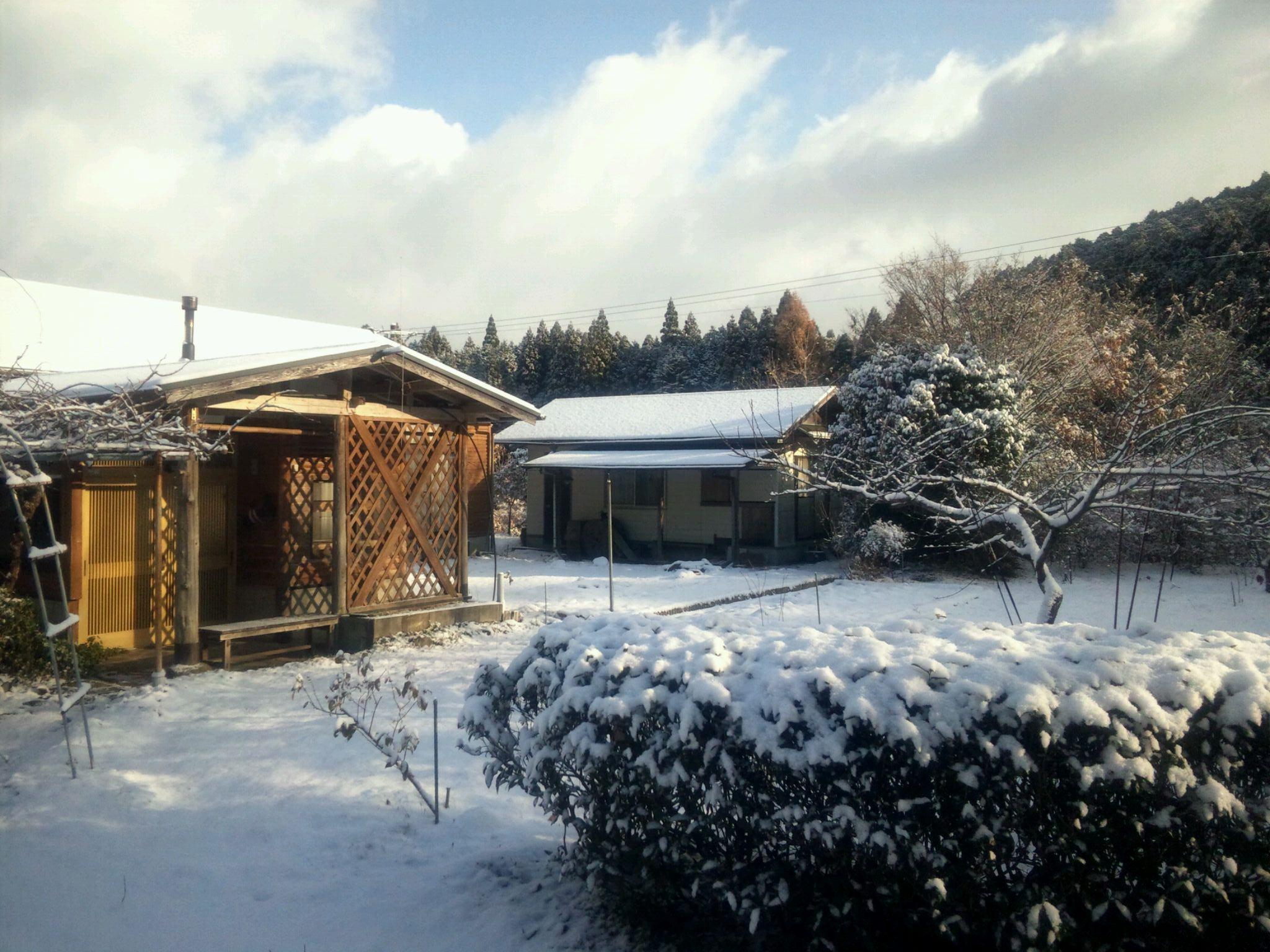熊本なのに・・・?雪なんです!_a0254656_10071.jpg