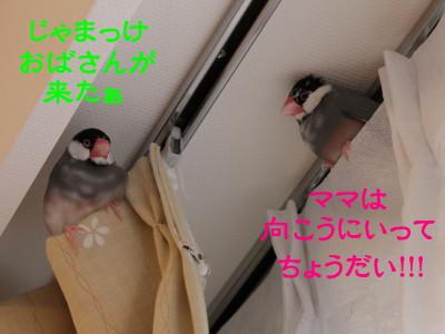 b0158061_21312137.jpg