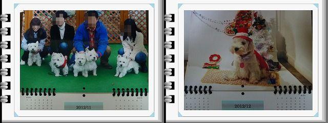 f0169884_14144542.jpg