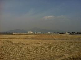 熊本城マラソンへの道 コース一部試走Part2_c0052304_517237.jpg