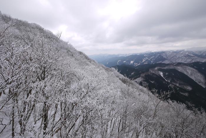霧氷の高見山_e0214805_711097.jpg