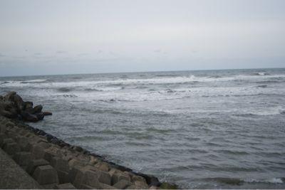 今日の海_c0132732_21154725.jpg