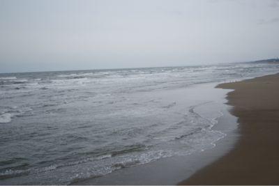 今日の海_c0132732_21155252.jpg