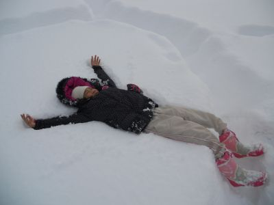 冬の芽_a0162646_2134093.jpg