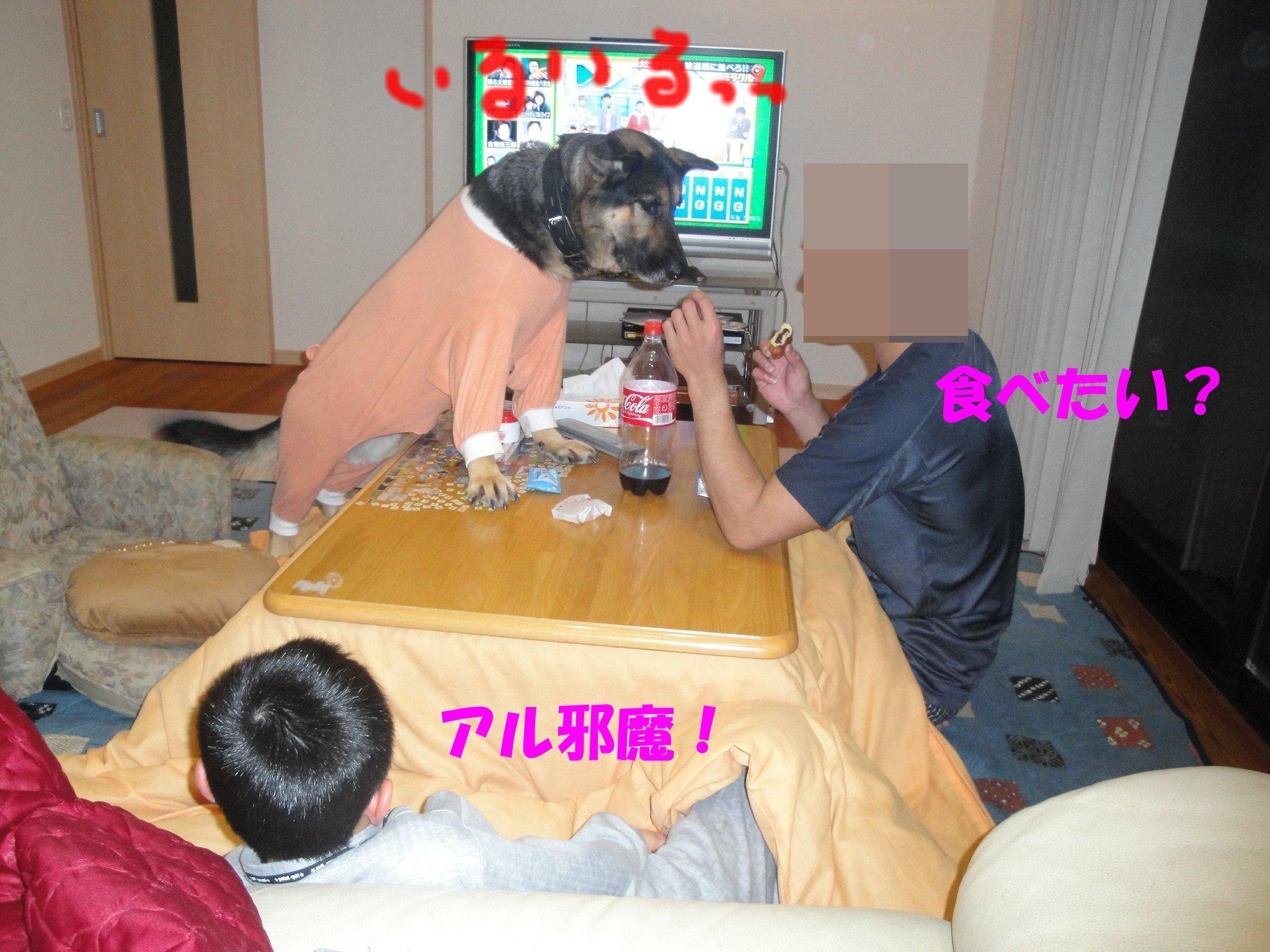 b0113663_14565592.jpg