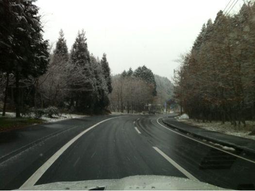 雪だ_e0228869_9453239.jpg