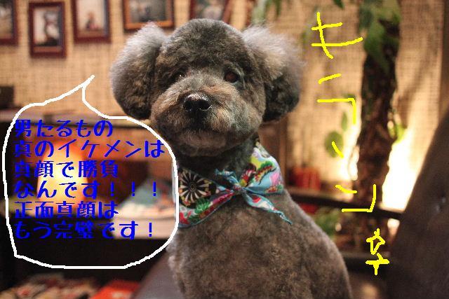 b0130018_16533891.jpg