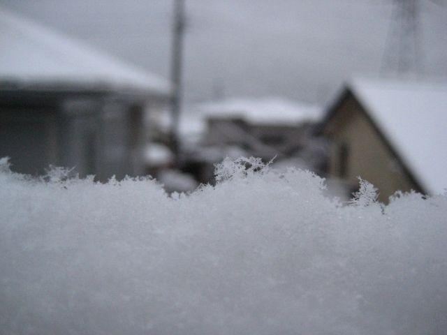 雪空_b0093221_8414725.jpg