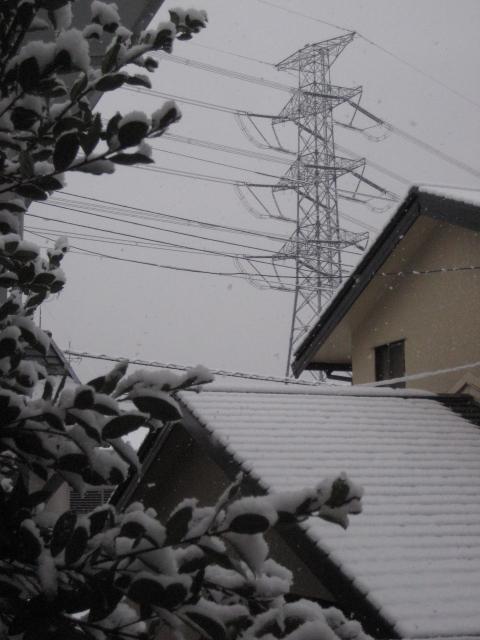 雪空_b0093221_846680.jpg