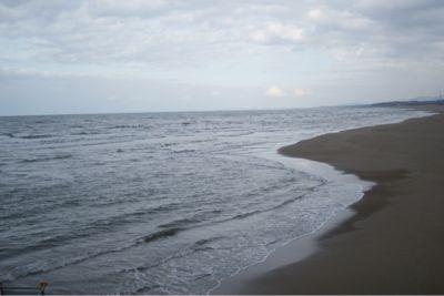 今日の海_c0132732_13243875.jpg