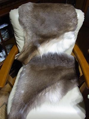 トナカイの毛皮